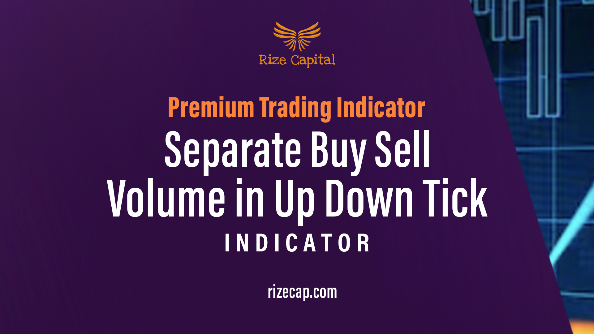 Separate Buy Sell Volume in Up Down Tick Premium Indicator